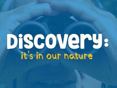 Bird Identification and Behaviour Courses | Continuing