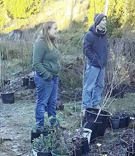 Students on planting site